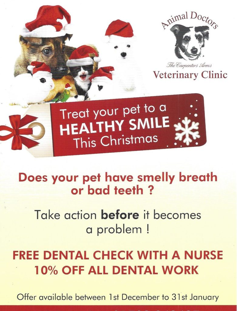BOOK TODAY for a free nurse dental check and 10% off all